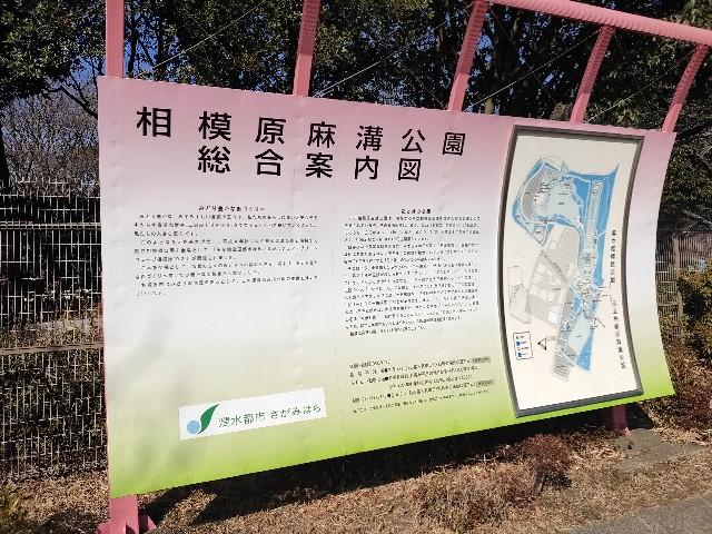 f:id:hakaiou20067:20210207161333j:image