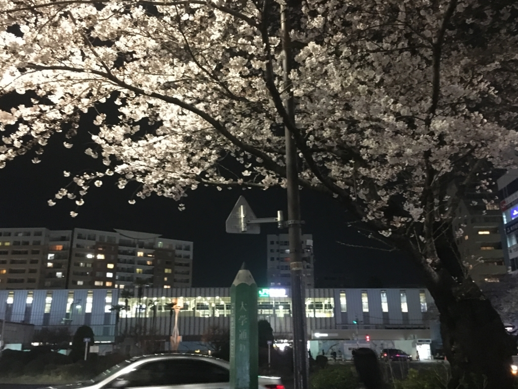 f:id:hakase_inori:20170612120326j:plain