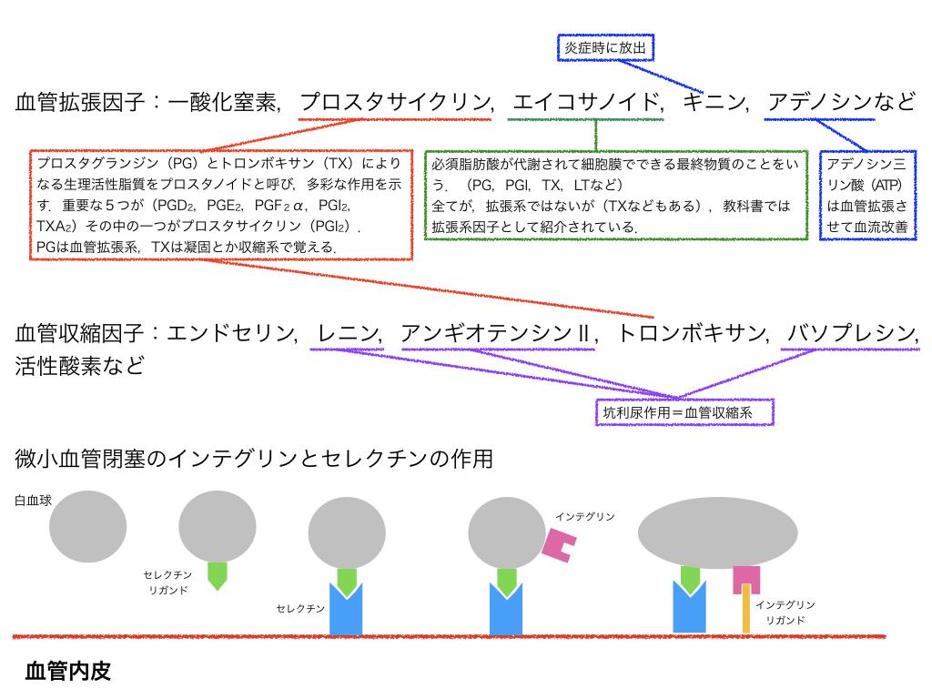 f:id:hakasenoorigami:20180505130455j:plain