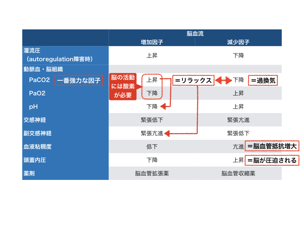 f:id:hakasenoorigami:20180507225425j:plain