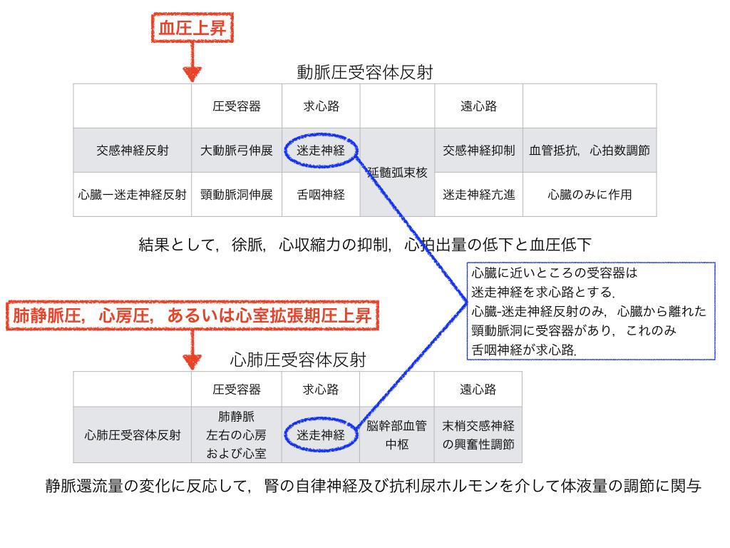f:id:hakasenoorigami:20180508080953j:plain