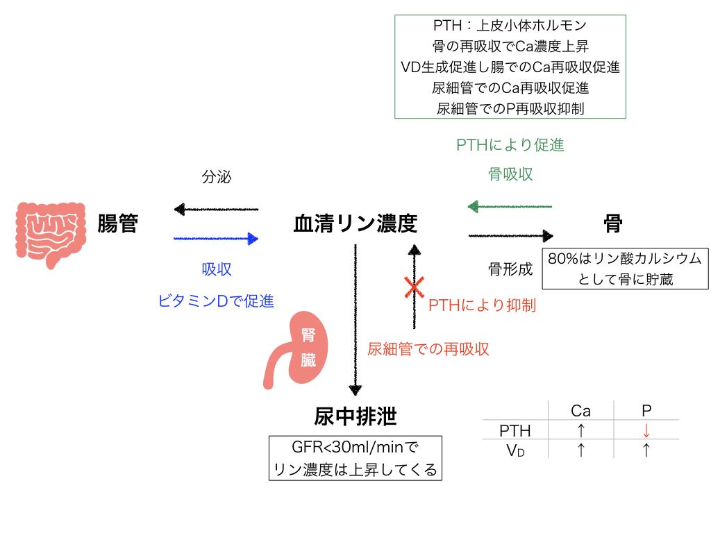 f:id:hakasenoorigami:20180513174610j:plain