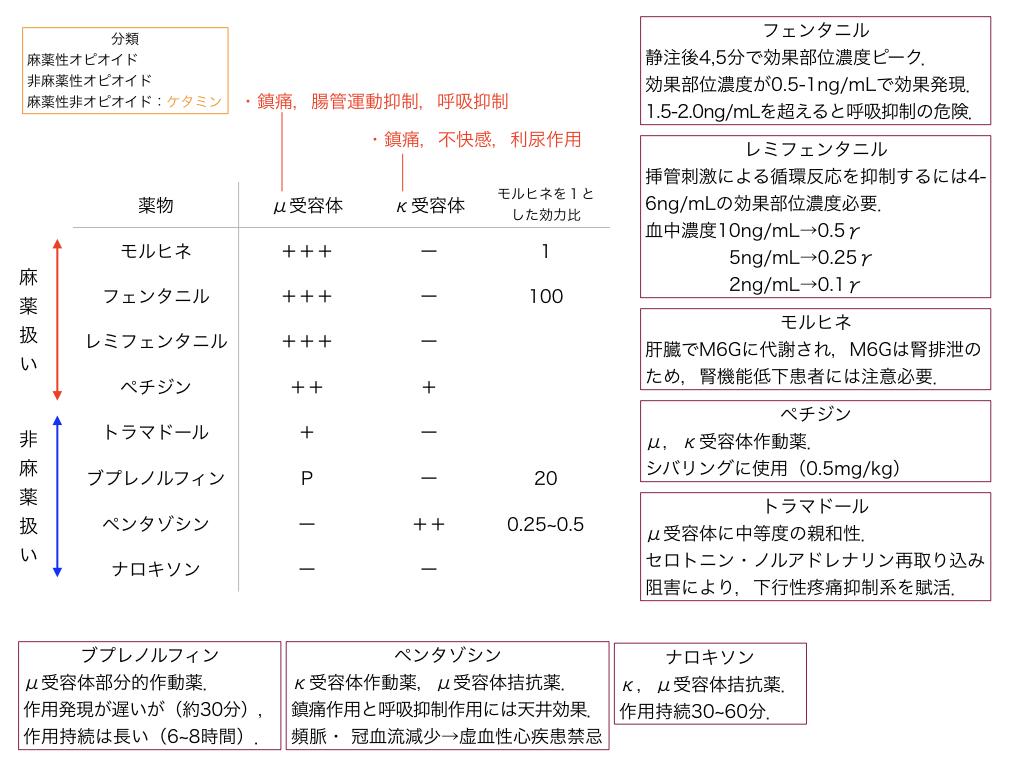f:id:hakasenoorigami:20180601203828j:plain