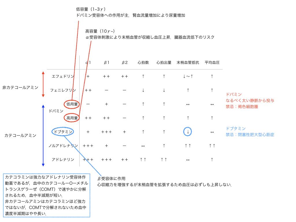 f:id:hakasenoorigami:20180603134633j:plain