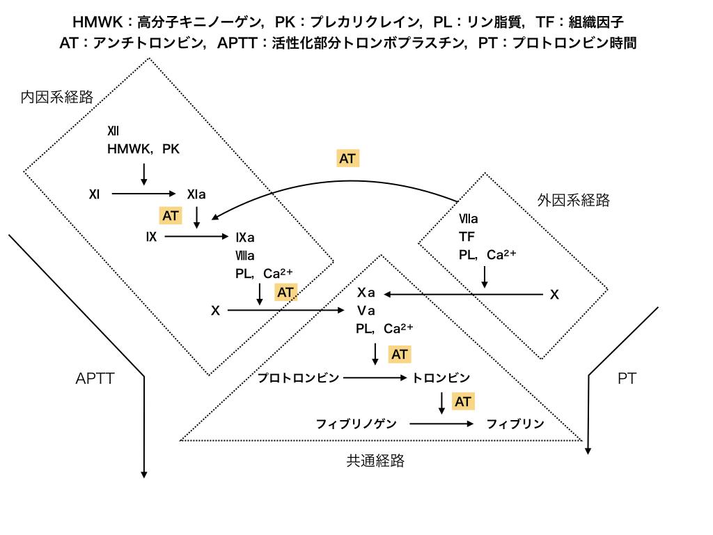 f:id:hakasenoorigami:20180626134247j:plain