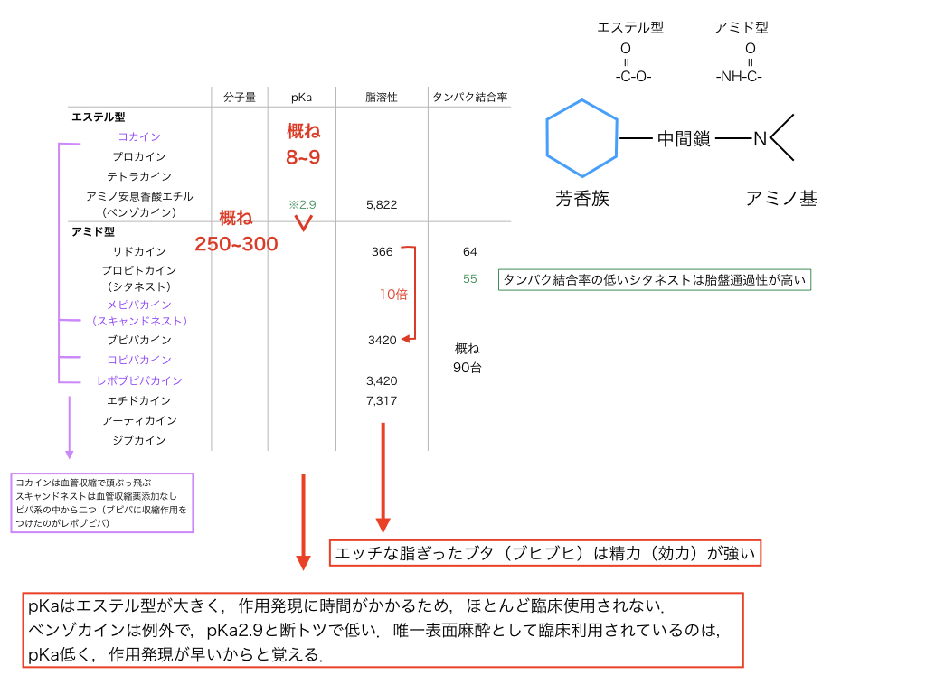 f:id:hakasenoorigami:20180714205918j:plain