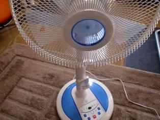 今年の夏は扇風機でどこまで耐えられるか...