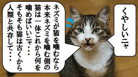 f:猫マンガ3