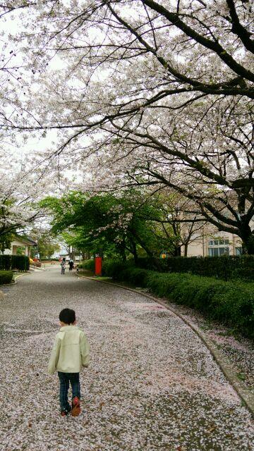 f:id:hako-niwa:20160411095211j:plain