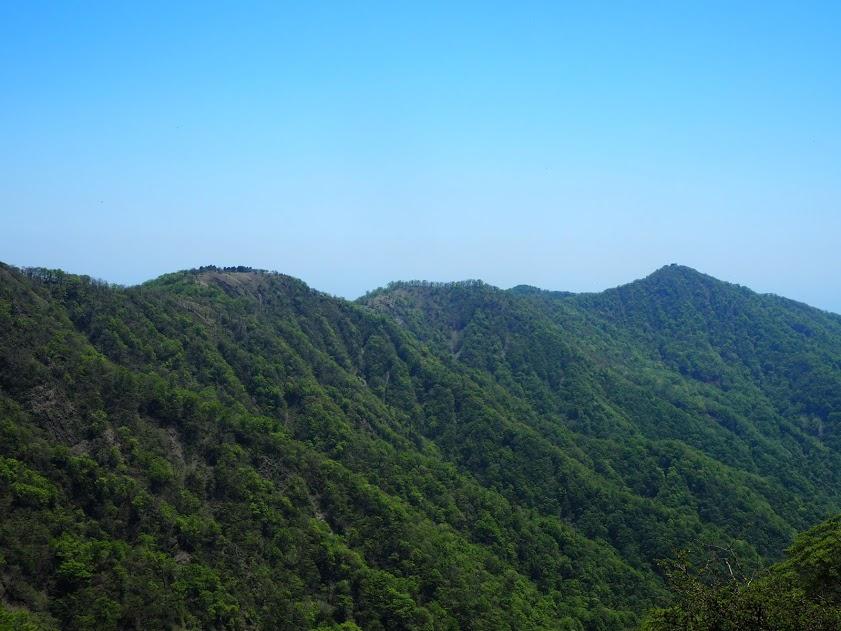蛭ヶ岳へ登る主脈