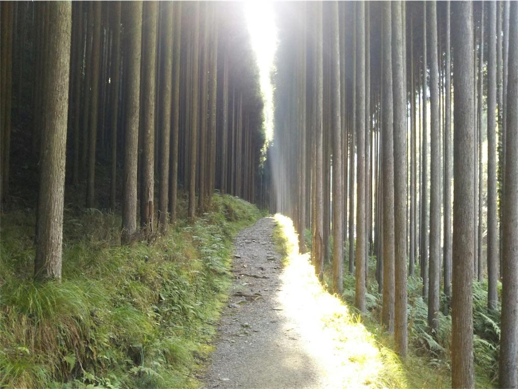 f:id:haku-shiroh:20160912143236j:image