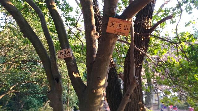 f:id:haku-shiroh:20161219130553j:plain
