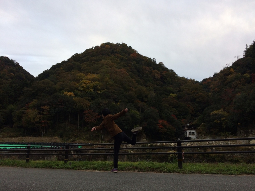 f:id:hakugawa410:20161111124850j:plain