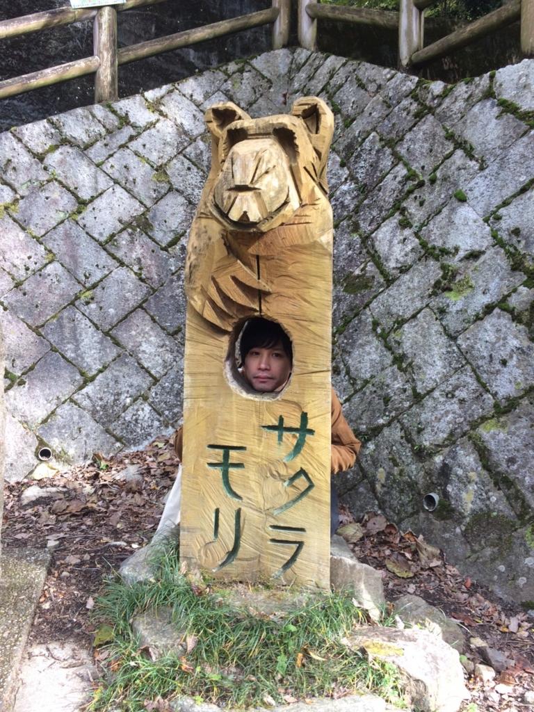 f:id:hakugawa410:20161111124854j:plain
