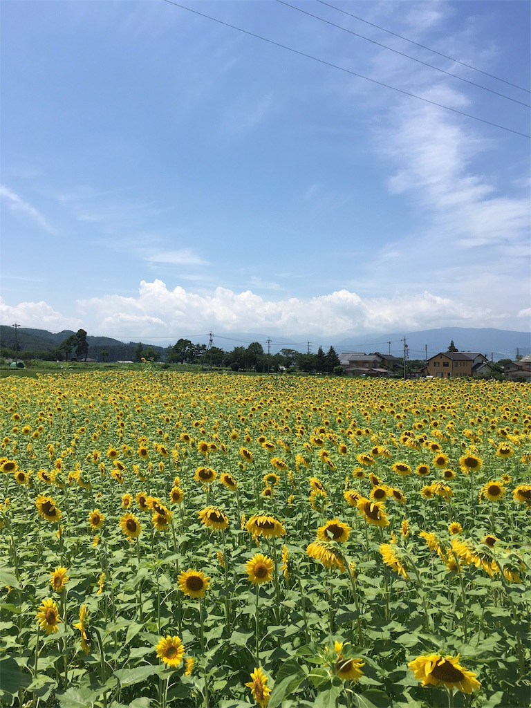 f:id:hakugawa410:20170731164830j:image