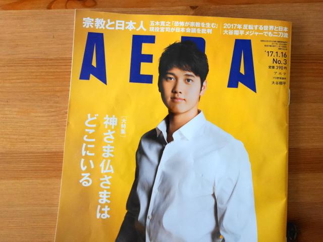 f:id:hakuoatsushi:20170109061039j:plain