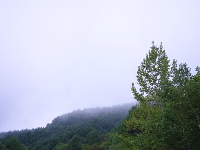f:id:hakuoatsushi:20170604105020j:plain