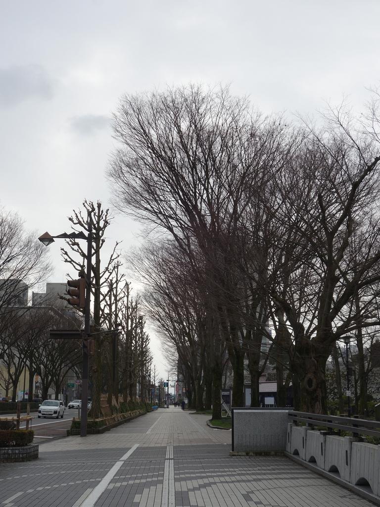 f:id:hakuoatsushi:20190209162217j:plain