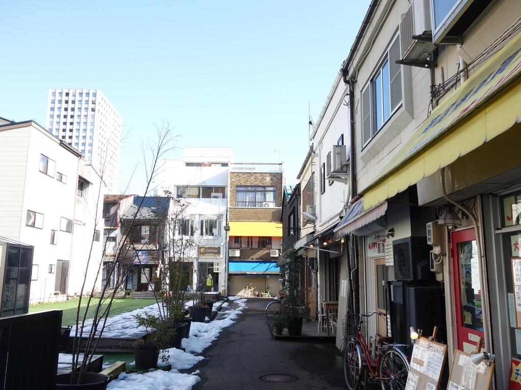 f:id:hakuoatsushi:20190212084705j:plain