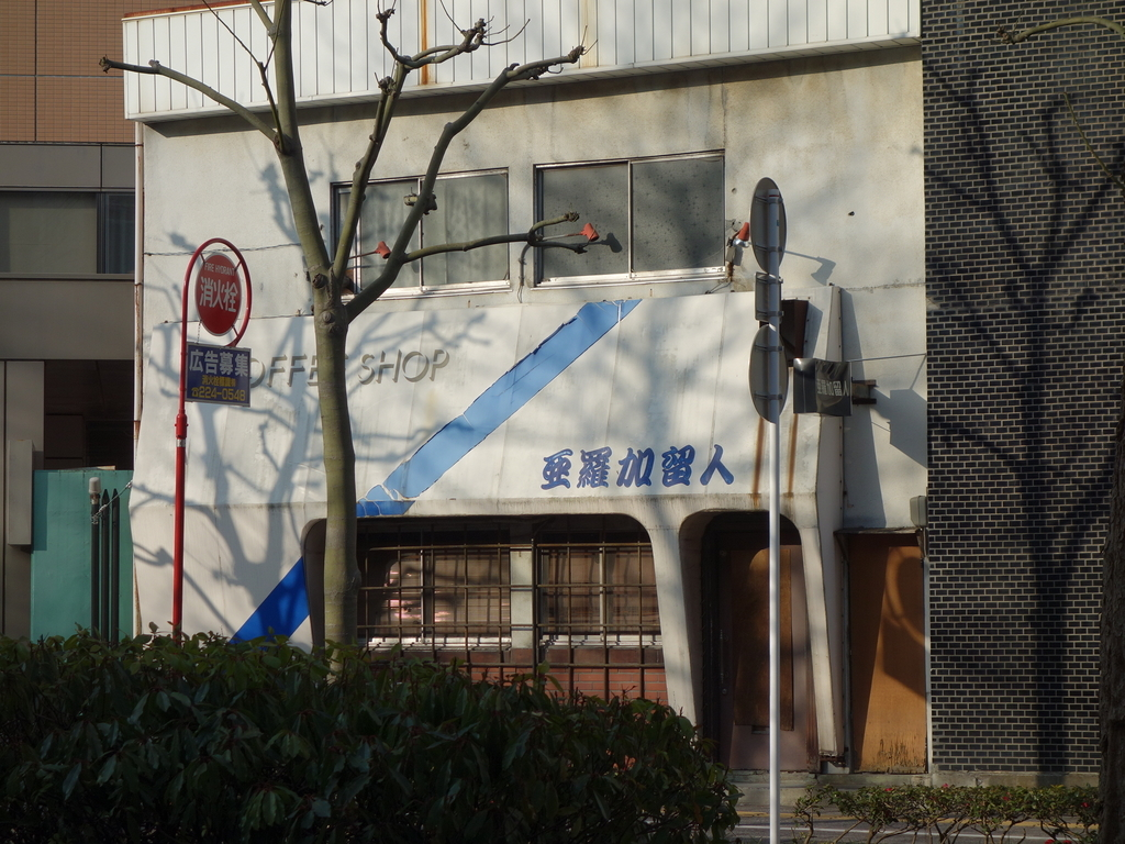f:id:hakuoatsushi:20190308125341j:plain