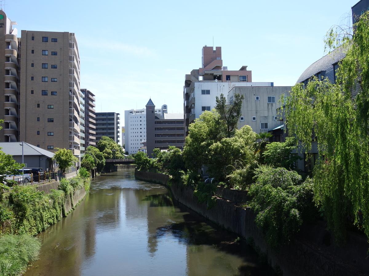 f:id:hakuoatsushi:20190515113007j:plain
