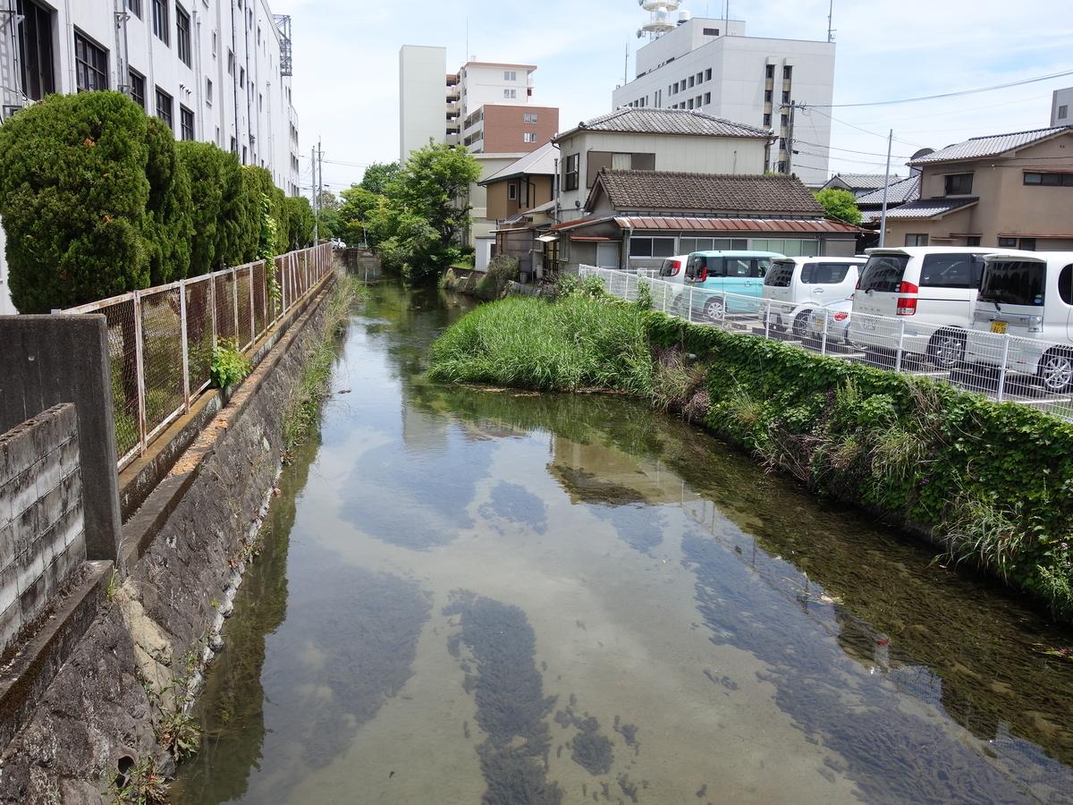 f:id:hakuoatsushi:20190612135158j:plain
