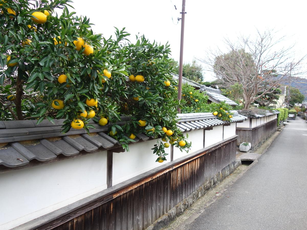 f:id:hakuoatsushi:20191212062329j:plain