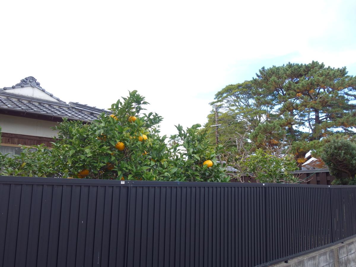 f:id:hakuoatsushi:20191212063541j:plain