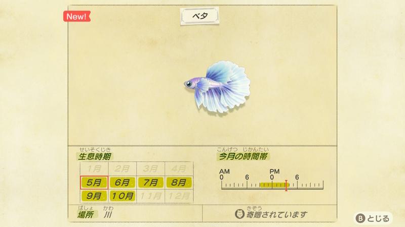 f:id:hakusai_games:20200508132654j:plain