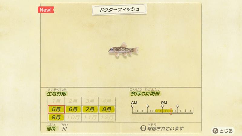 f:id:hakusai_games:20200508132705j:plain