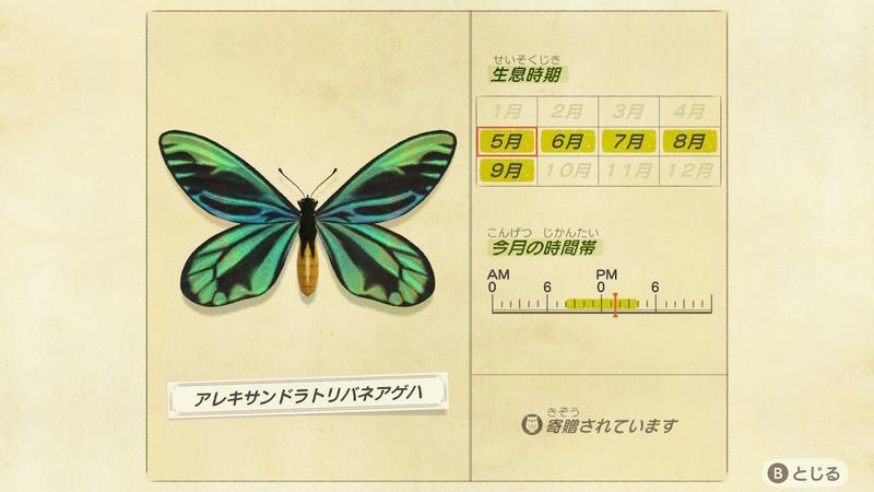 f:id:hakusai_games:20200508133241j:plain