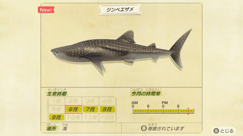f:id:hakusai_games:20200602143901j:plain