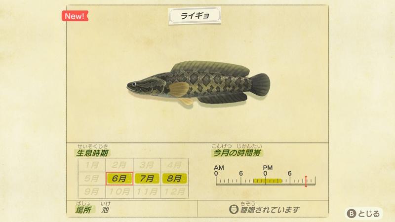 f:id:hakusai_games:20200602143916j:plain