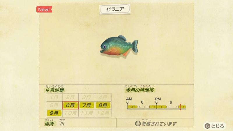 f:id:hakusai_games:20200602143921j:plain