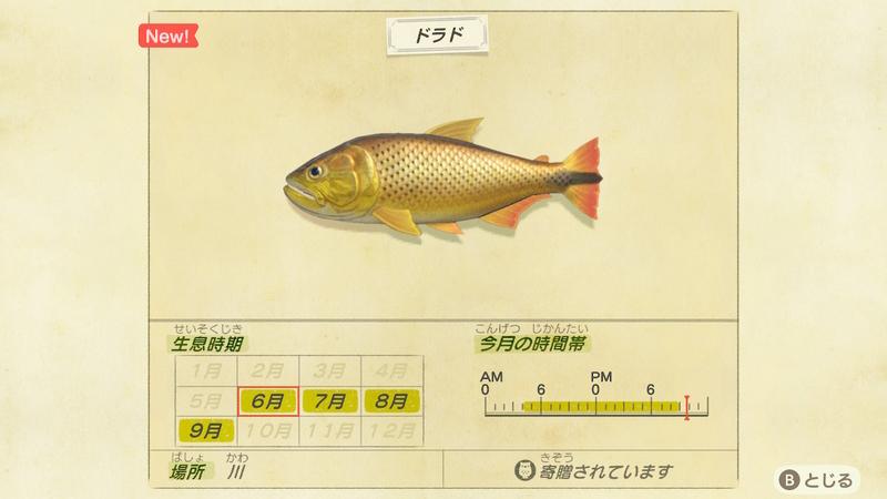 f:id:hakusai_games:20200602143932j:plain