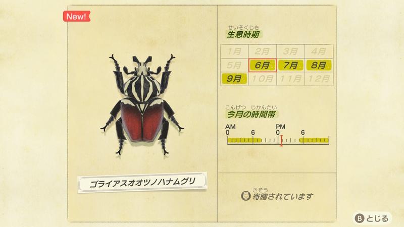f:id:hakusai_games:20200602143949j:plain