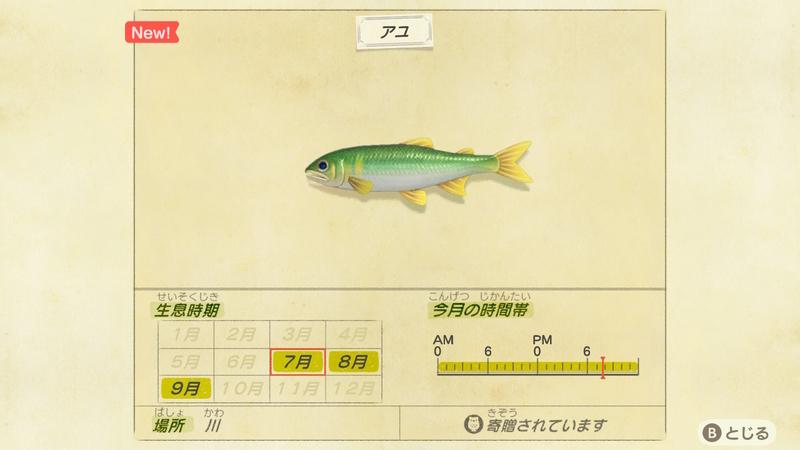 f:id:hakusai_games:20200702195942j:plain