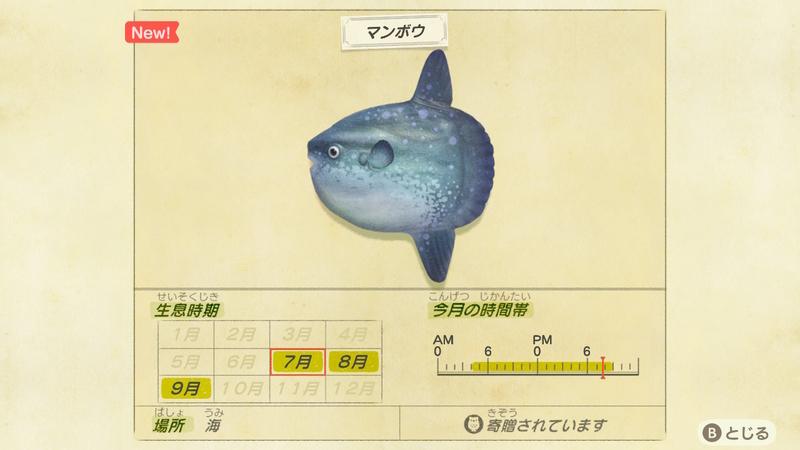 f:id:hakusai_games:20200702195958j:plain