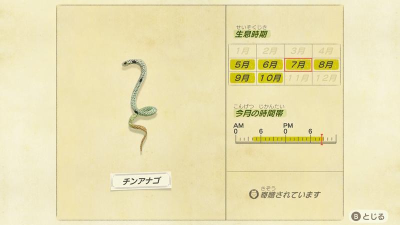f:id:hakusai_games:20200704204140j:plain