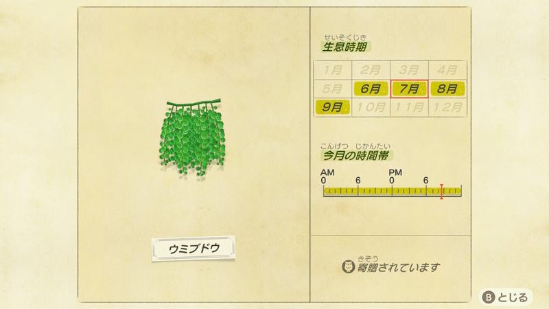 f:id:hakusai_games:20200704204151j:plain