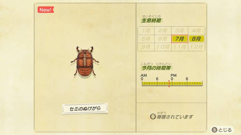 f:id:hakusai_games:20200729124056j:plain