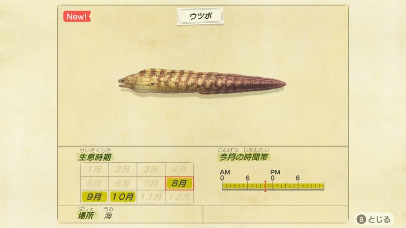 f:id:hakusai_games:20200806193739j:plain