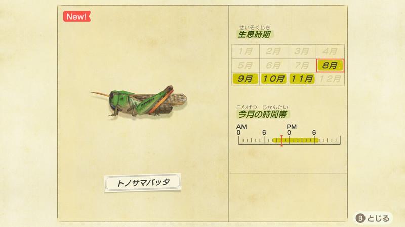 f:id:hakusai_games:20200806193813j:plain