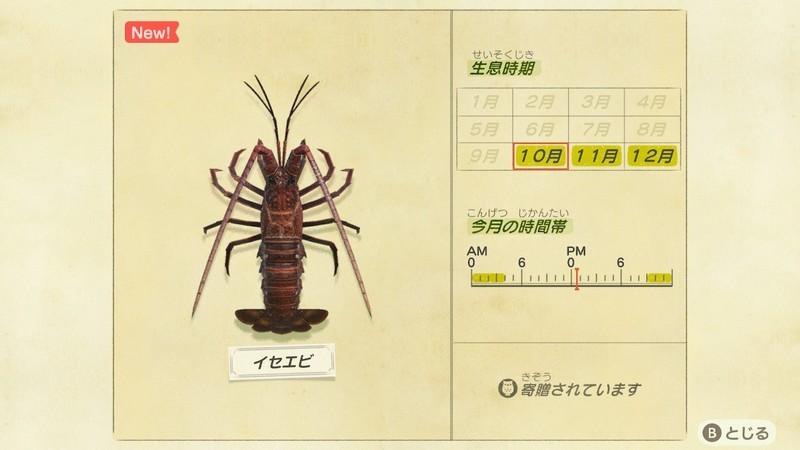 f:id:hakusai_games:20201008234853j:plain