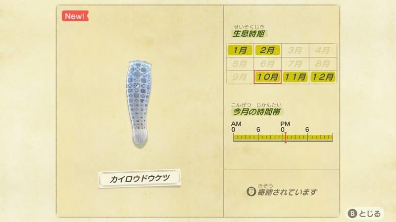 f:id:hakusai_games:20201008234858j:plain