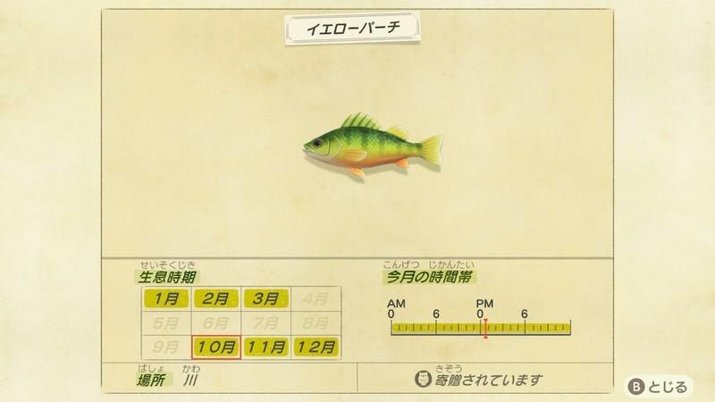 f:id:hakusai_games:20201008234907j:plain