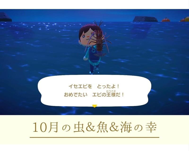 f:id:hakusai_games:20201009000806j:plain
