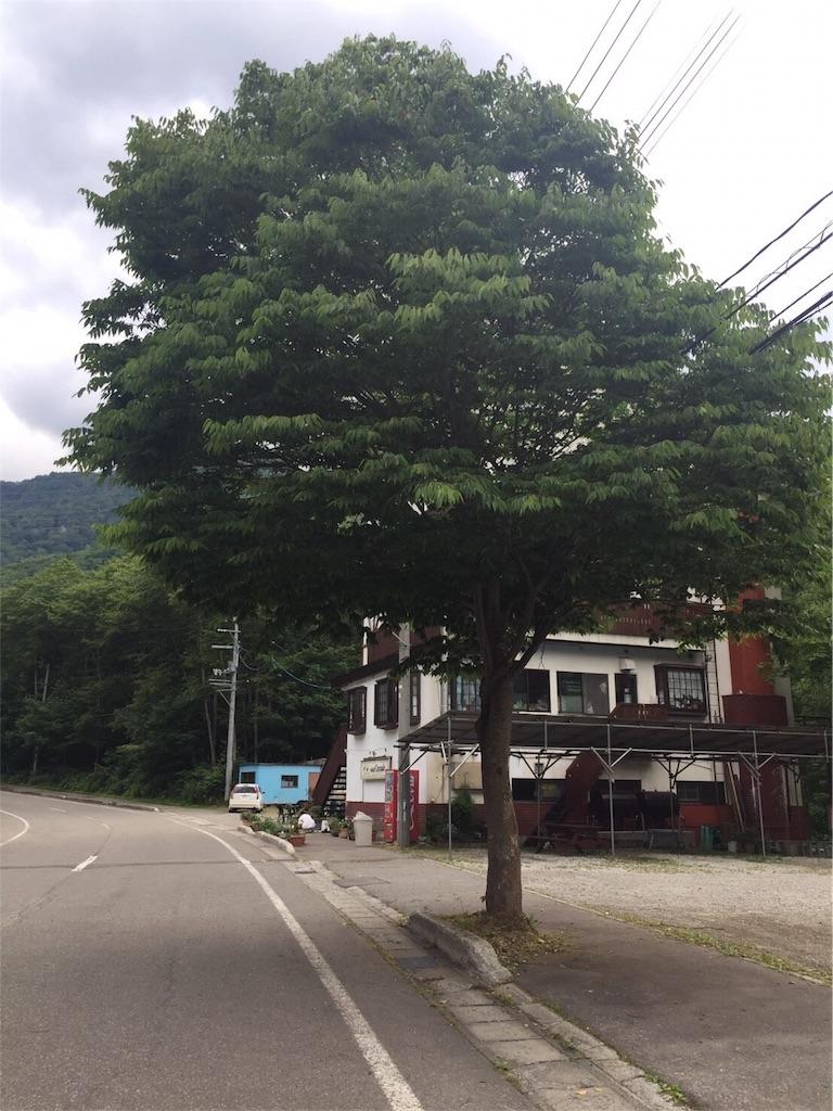 f:id:hakusancinegu4443:20180702165556j:image