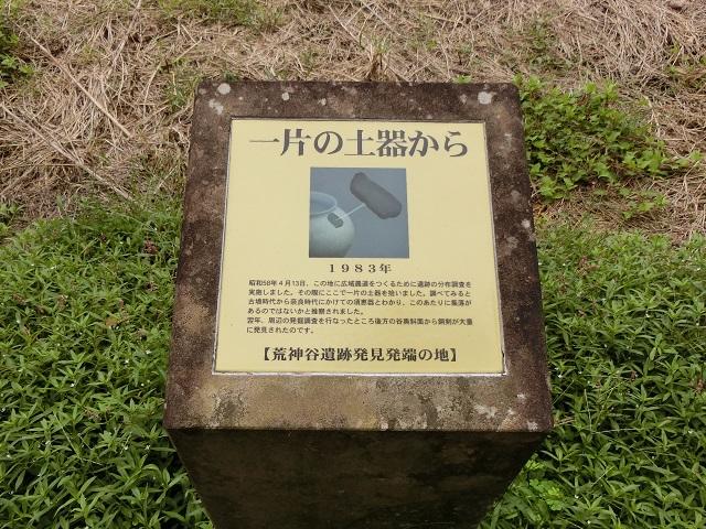 f:id:hakusaniiyo:20200207184038j:plain