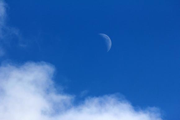 f:id:hakute03:20120129130838j:image